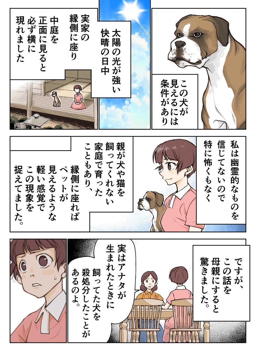 茶色い犬02
