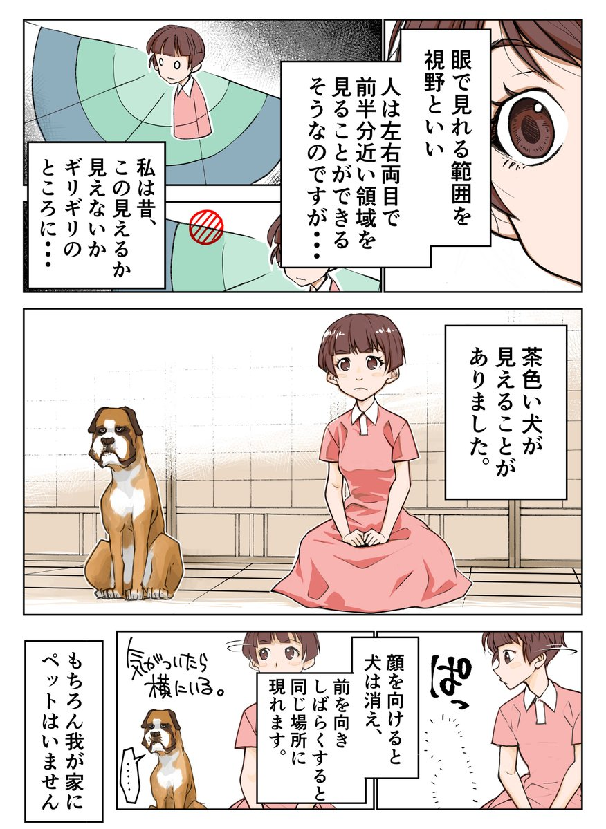 茶色い犬01