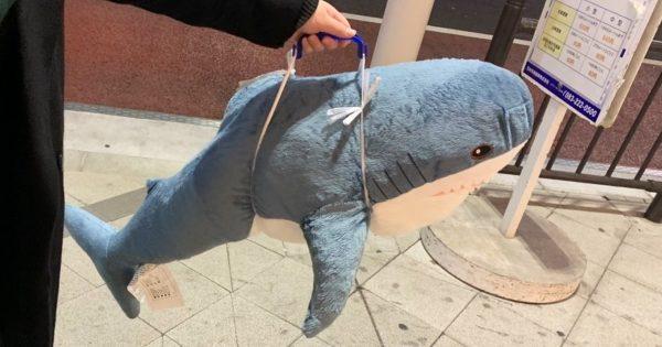 IKEAで買ったデカいサメのぬいぐるみをむき出しで持ち帰った結果...