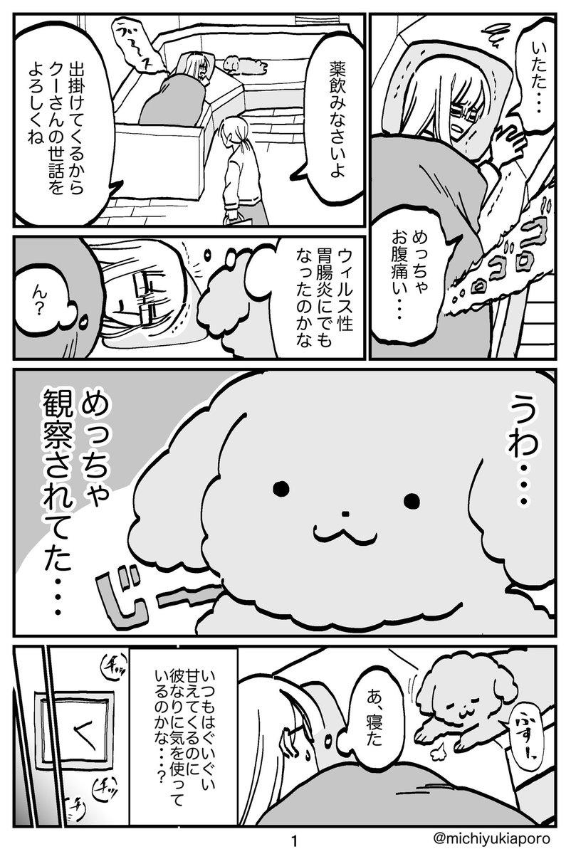 体調悪い飼い主に気を使う犬01
