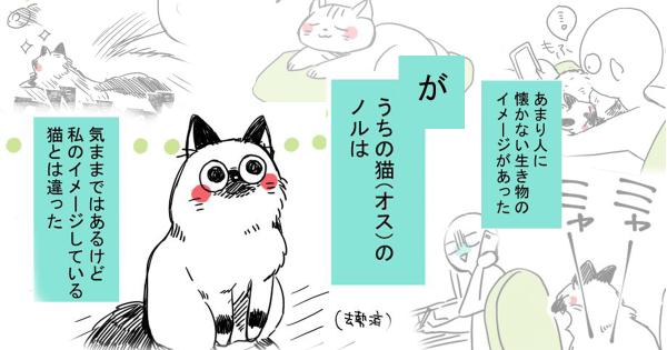 【漫画】飼い始めたネコが思っていたのと全く違うんだが...