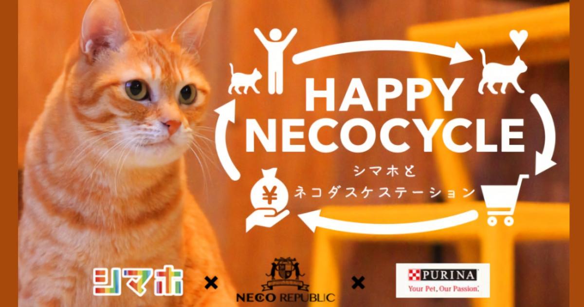 インスタに猫写真を投稿するだけ!誰にでもできる「猫助け」プロジェクト
