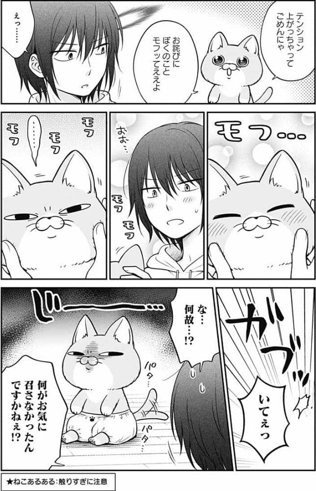 変な猫に居候される話