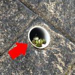 道端で見つけた筒の中を覗くとそこには...