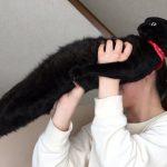 ほんとに猫なのかお前は… 野生の本能をなくした姿に驚愕