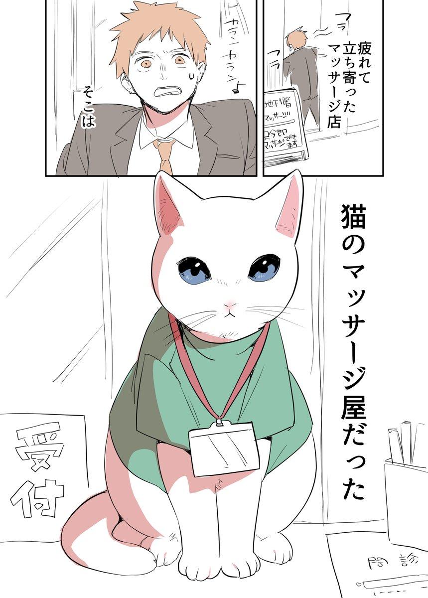 猫のマッサージ屋さん01