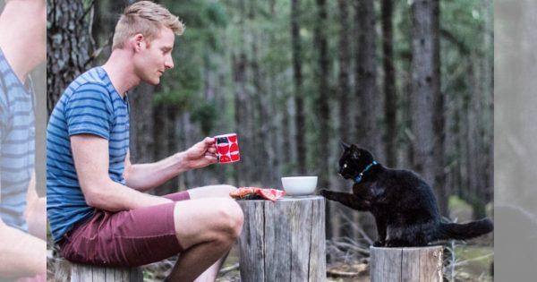 【人類の到達点かよ】仕事をやめ、相棒の黒猫と旅を続ける男性が羨ましすぎる…