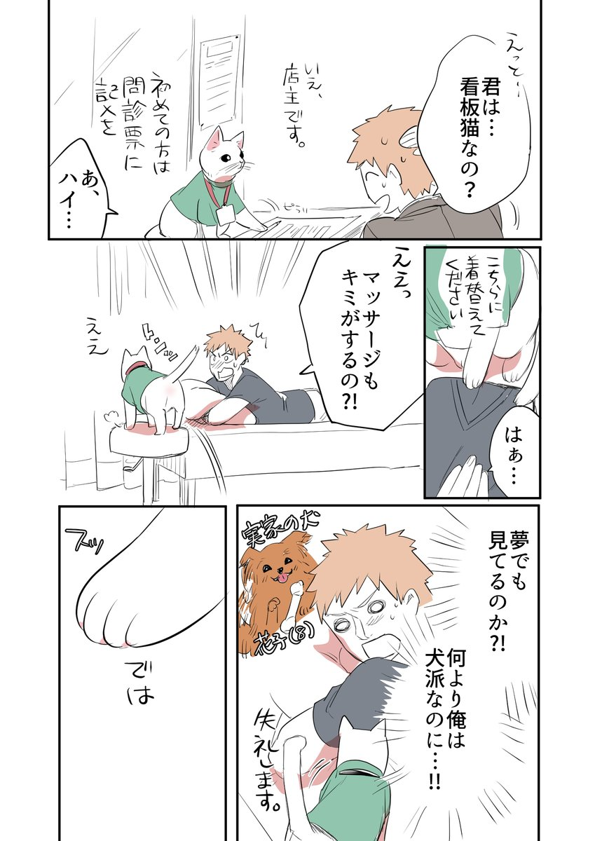 猫のマッサージ屋さん02