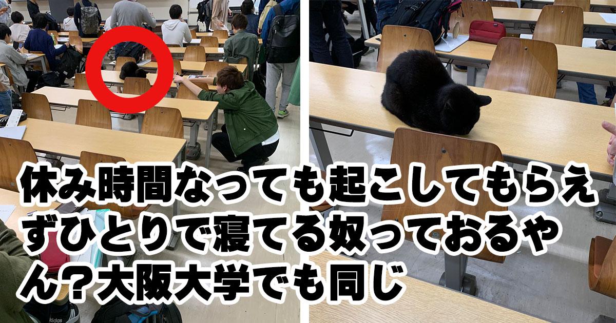 優秀なだけじゃない!我らが「大阪大学」 7選