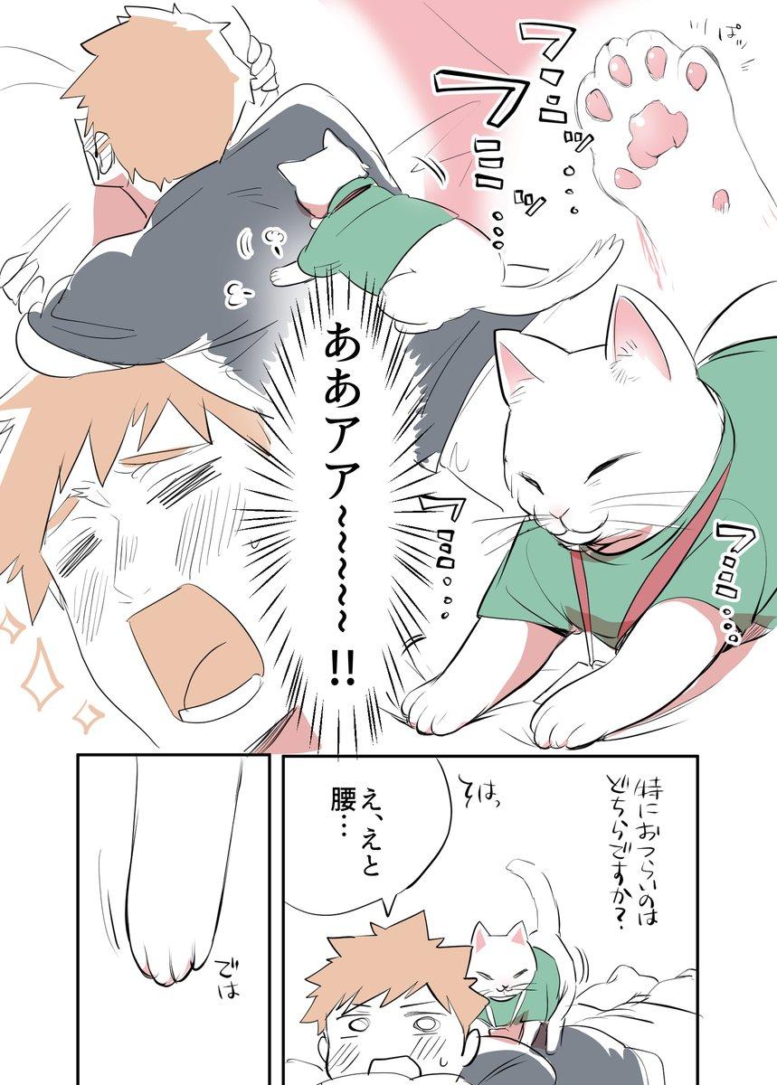 猫のマッサージ屋さん03