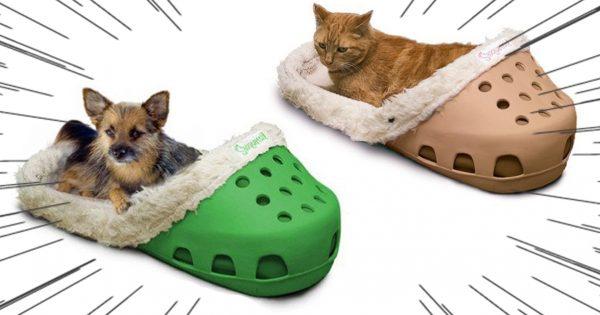 ペット用「サンダル型ベッド」の破壊力に吹いた