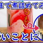 【検証】果物100%ジュースを煮詰めるだけで激うまジャムができる説