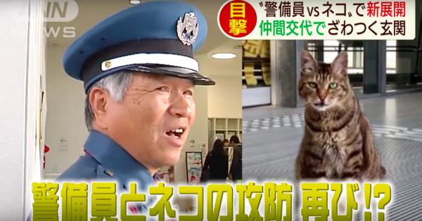 広島の美術館で起きた「ネコ VS 警備員」のゆる〜いバトルに新たなネコが参戦する