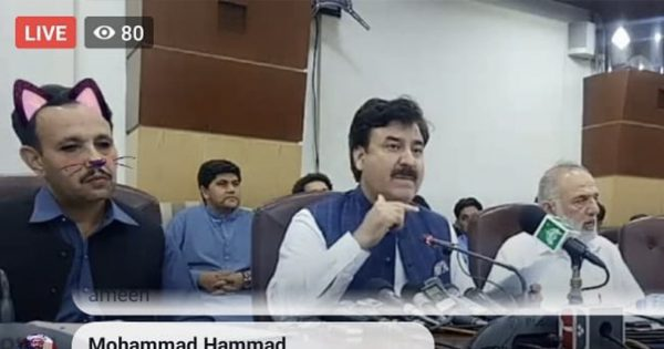 """パキスタンの州政府会見に""""ネコ""""が登場する「ゆるアクシデント」が発生"""