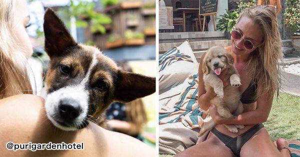 今年の夏はここに決まり!子犬と存分に遊べるホテルがバリにあるんだって