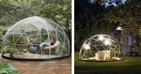360度自然に囲まれる「透明ドーム」がめちゃ欲しい!