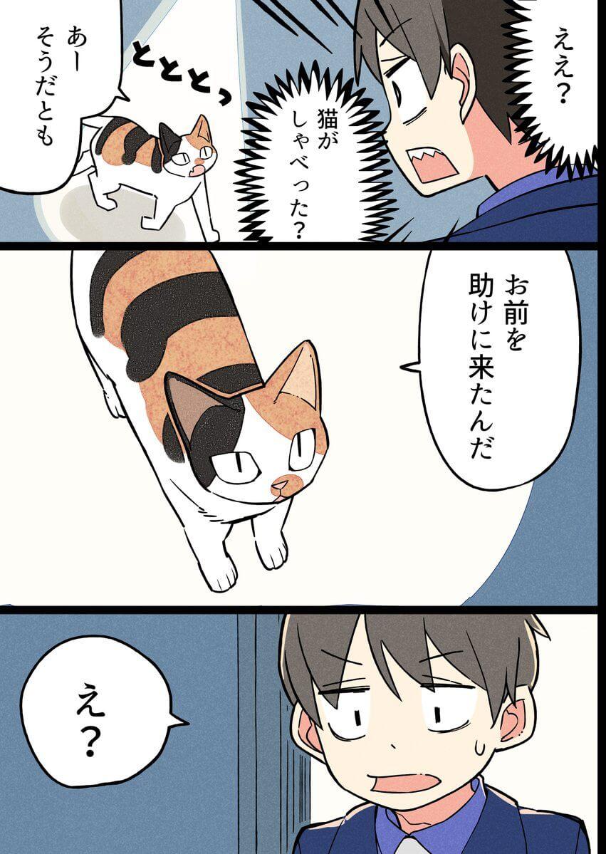 人の目を気にしない猫の話06