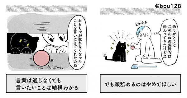 「猫と人間の気持ちは通じている」と教えてくれた出来事