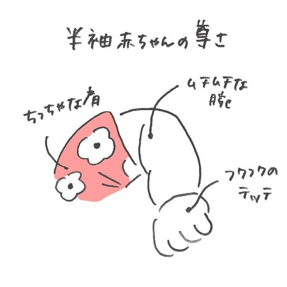 senasonouchi_60903947_653679078393289_3746556365724363594_n