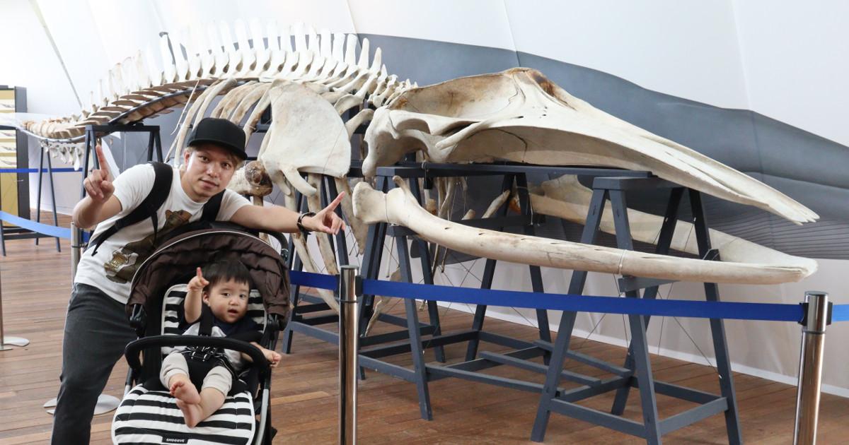 息子と一緒に福島県にある水族館に行ってきた!