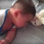 赤ちゃんとネコの「ごっつんこ」が平和すぎて癒されました