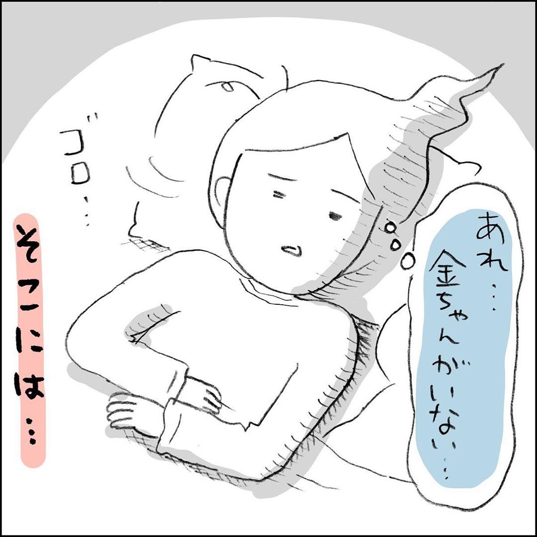 shiroko_u_61507895_223265215298286_3562750482912814464_n
