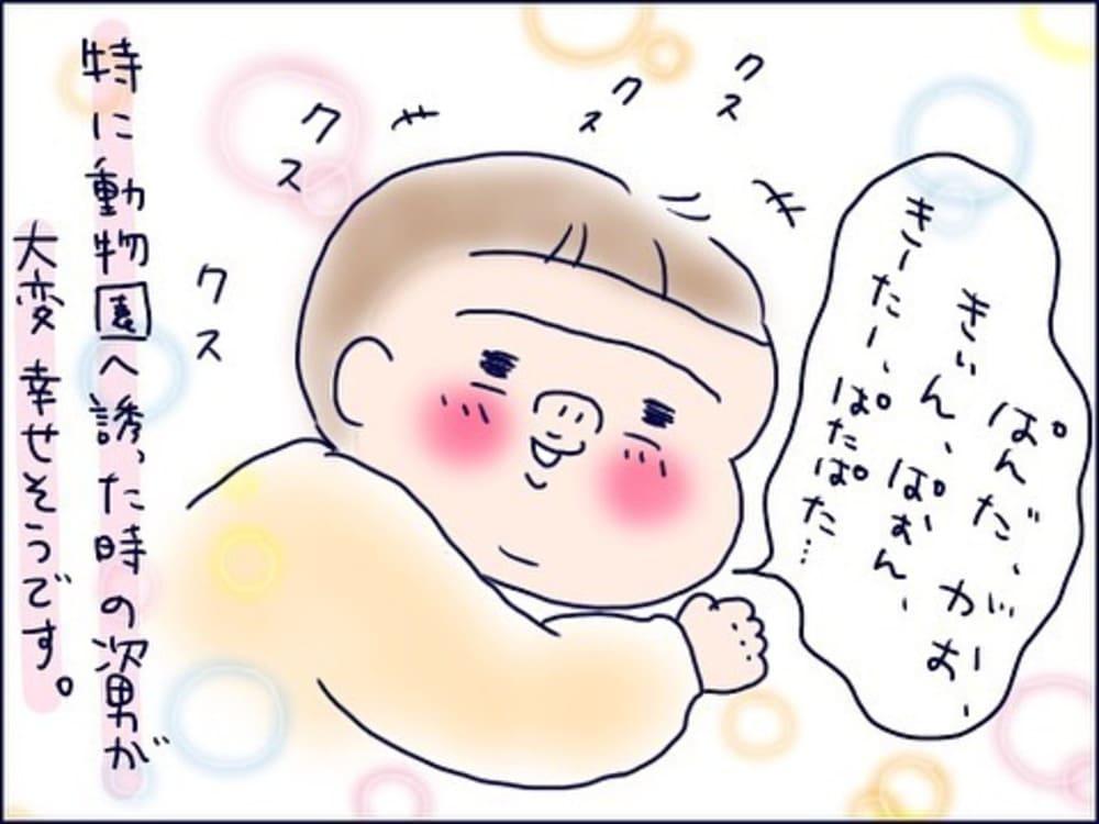 shiroko_u_65312233_379265269404358_3464627255645775068_n