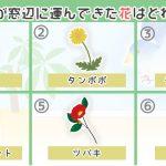 【心理テスト】あなたの恋愛満足度がわかる!飛んできた鳥がくわえていた花はどれ?