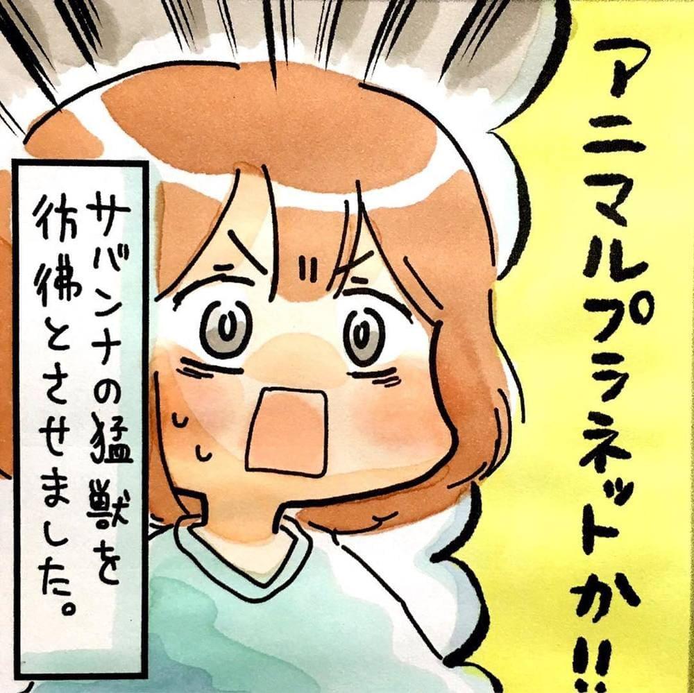 matsuzakishiori_67124017_1167175060152770_6148733816877282786_n