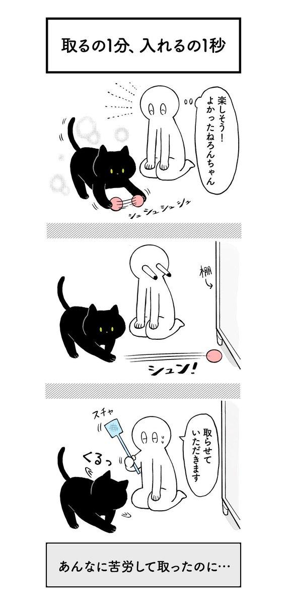 クレイジー:猫の気持ち3