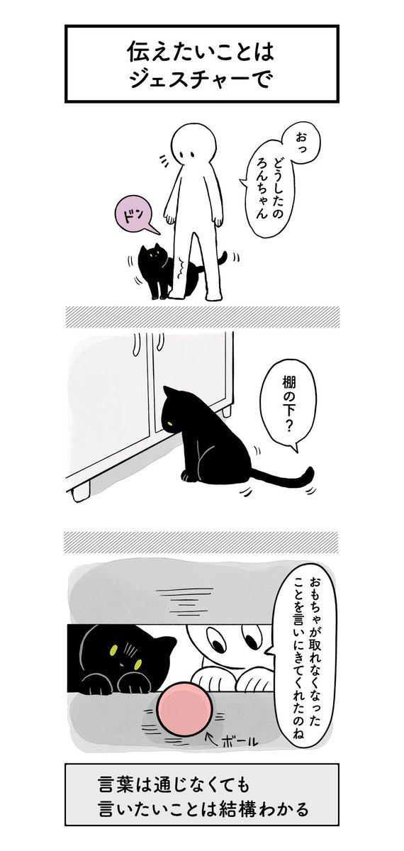 クレイジー:猫の気持ち1