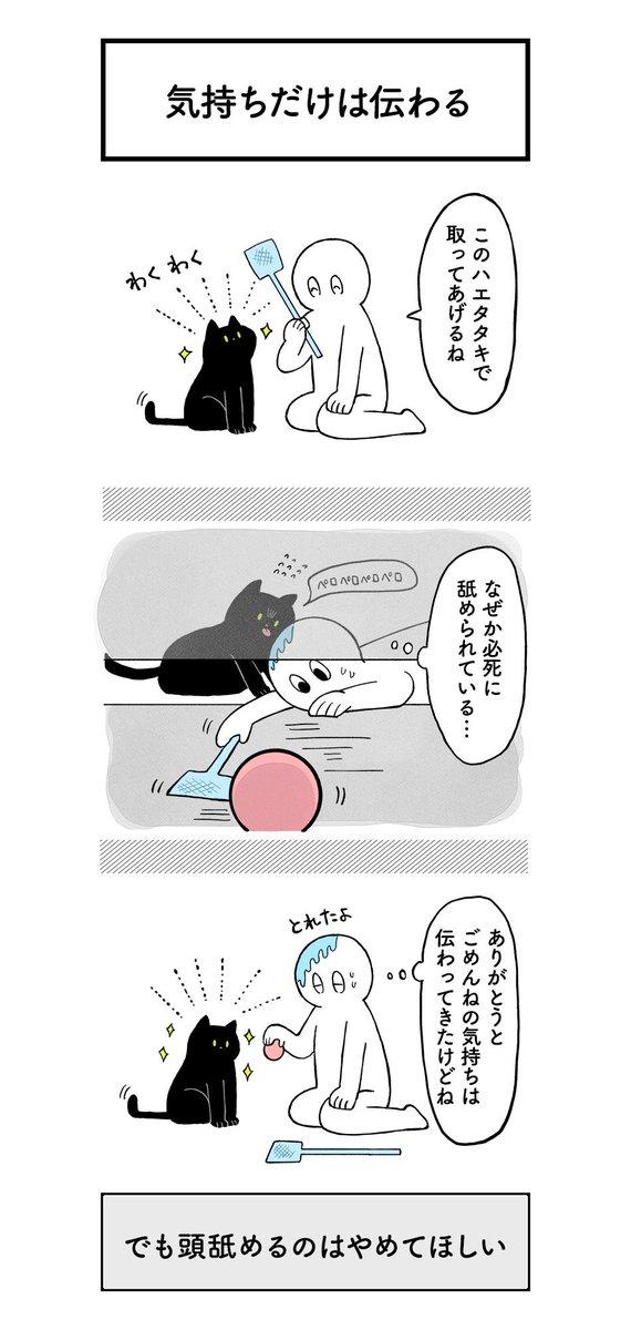クレイジー:猫の気持ち2