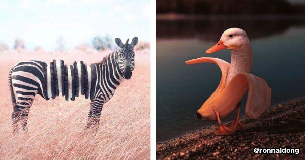 インスタで人気の「動物 × 食べ物」の画像が奇妙でゾワる…