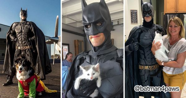 「バットマン」は保護犬・猫を救うために街を走り抜ける