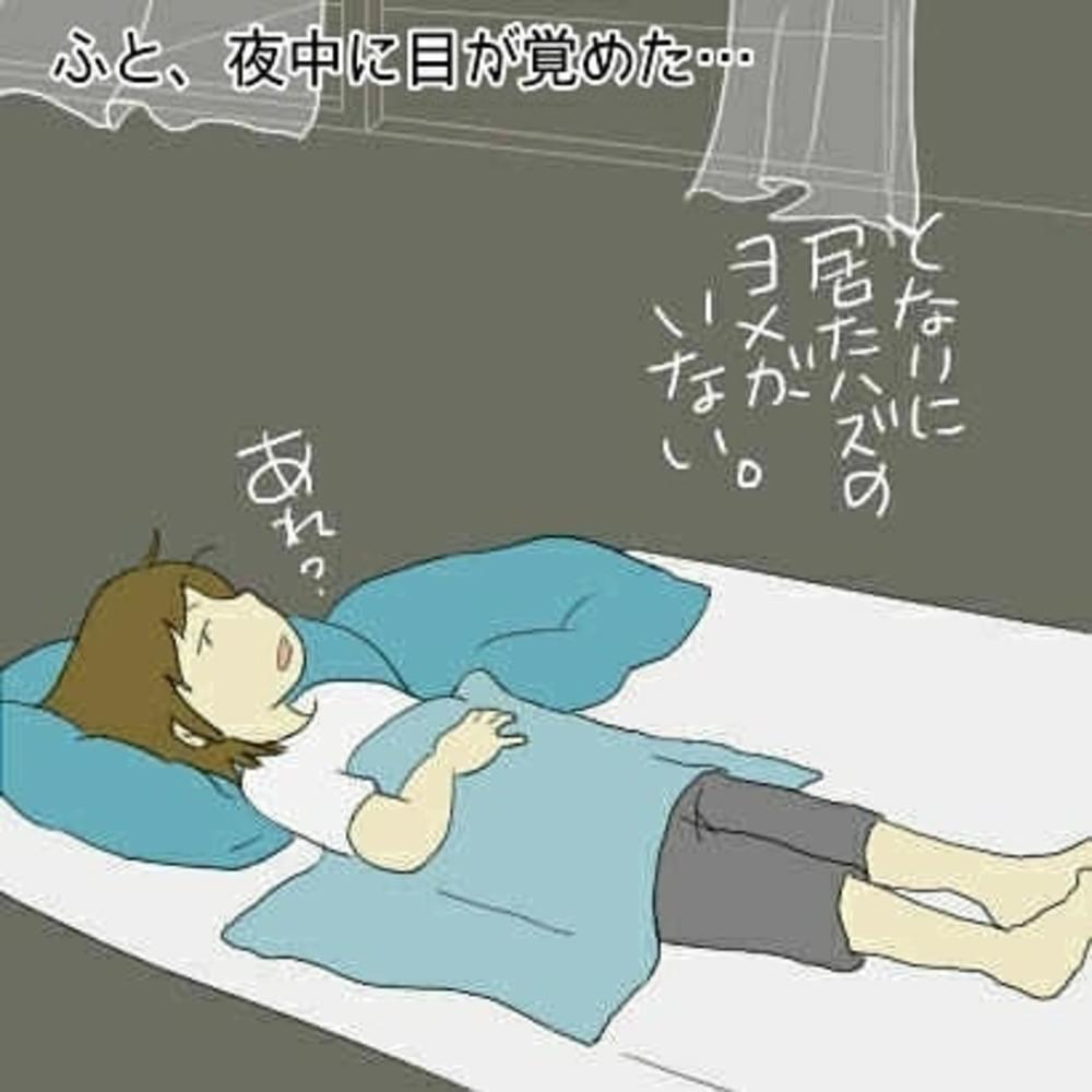 末丸アキ @suemaru_aki 嫁の寝相