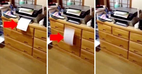 【19万いいね】印刷した紙が忽然と消える...!怪奇現象の秘密に笑った