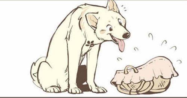 人間の赤ちゃんに遭遇する狼と犬の物語が最高過ぎた…