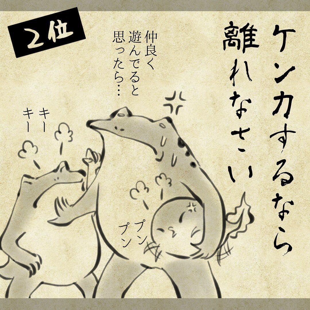 yuko_toritori_67889806_2374042622631698_4268741627732035752_n
