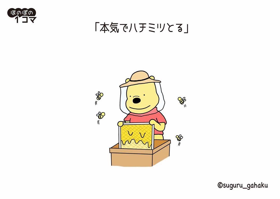 suguru_gahaku_69276673_2457419811160457_6209412238465422420_n