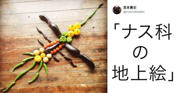 芸術的センスが爆発した「野菜」9選🍆