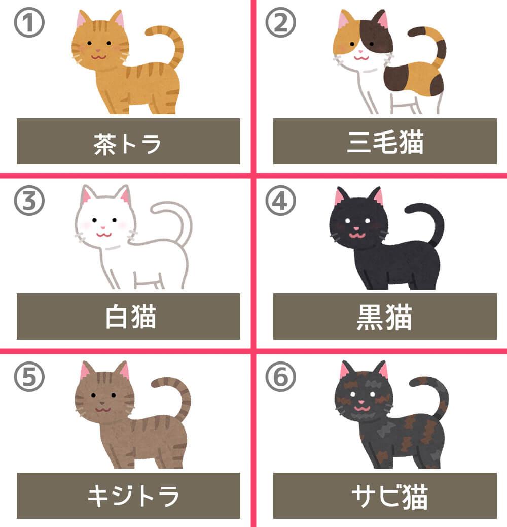 猫 友人 心理テスト