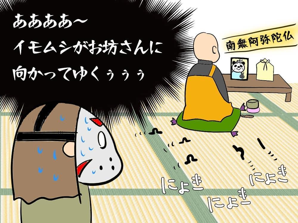 okusamawaceroz_69888864_3055255061157517_2397972782138657322_n