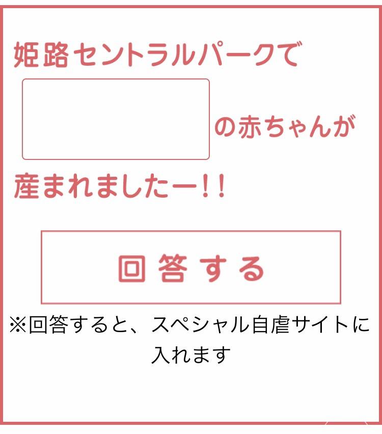 S__18243597