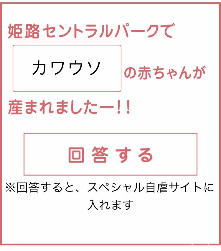 S__18243602
