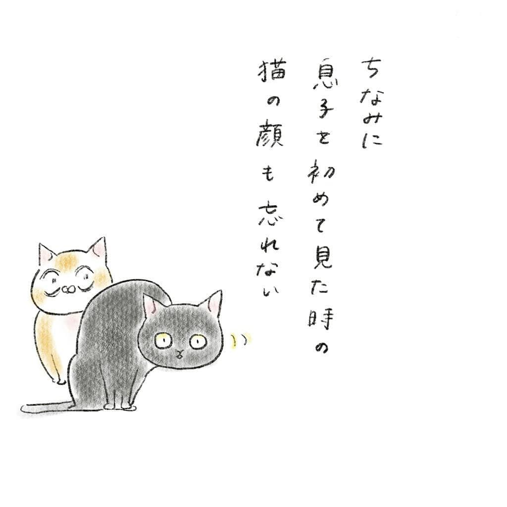 kyoko_yuge_66220082_434122694109821_401266384139983539_n