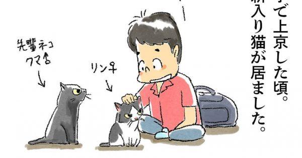 「猫との出会いと別れ」を描いた漫画に、心が温まった