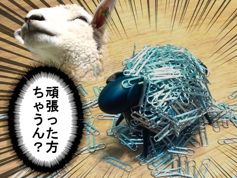 Sheepi