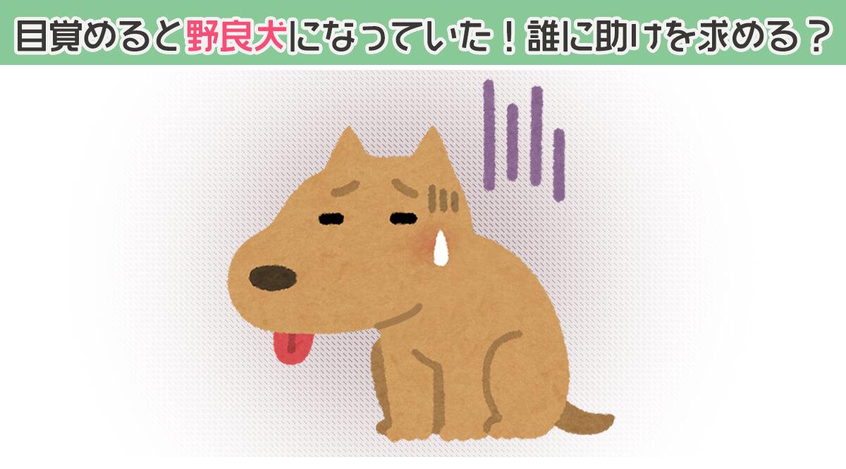 野良犬 世渡り上手 心理テスト