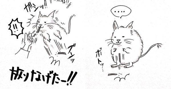 「デグー」との生活を描いた漫画に、超絶癒された