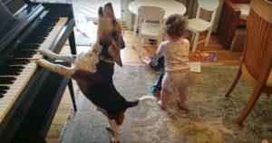 犬と子供を愛するあなたに送る「奇跡のほっこり動画」